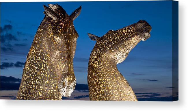 Landscape Canvas Print featuring the photograph Golden Kelpies by David Peat