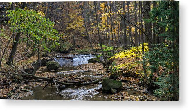 Cuyahoga Canvas Print featuring the photograph Upstream Bridal Veil Falls by Denny Beck
