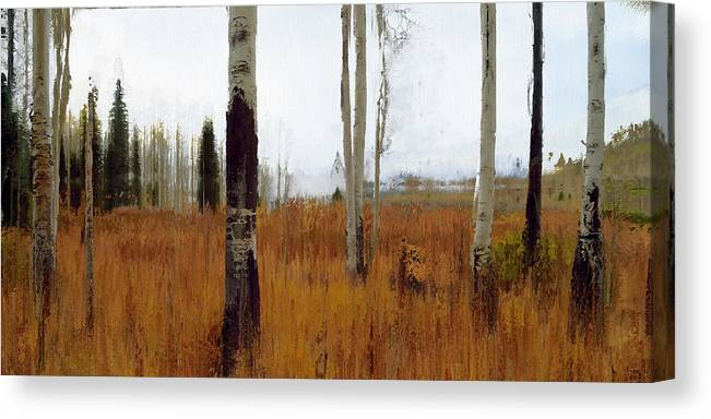 Contemporary Canvas Print featuring the digital art Aspen Forest Shear II by Ronald Bolokofsky