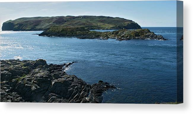 Sea Canvas Print featuring the photograph Calf Sound by Steve Watson