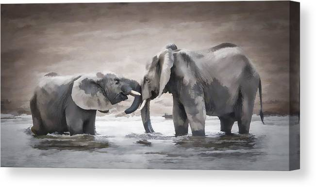 Elephant Canvas Print featuring the photograph Elephants From Africa by Ronel Broderick