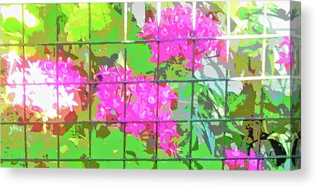 Canvas Print featuring the photograph Trapped Flowers by Randolph Thompson