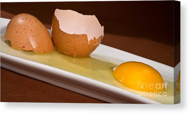 Iris Holzer Richardson Canvas Print featuring the photograph Broken Brown Egg by Iris Richardson
