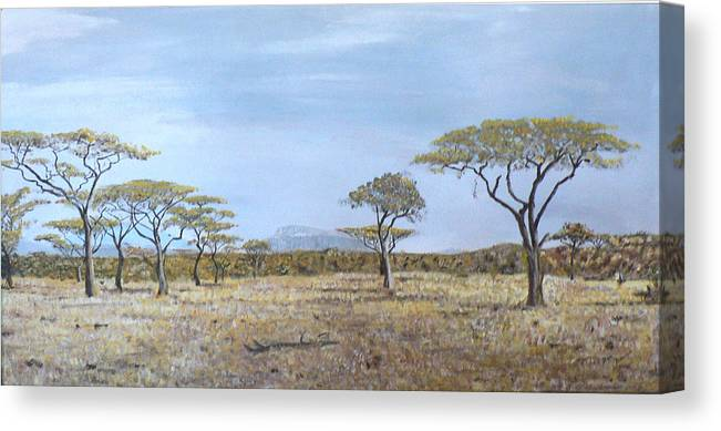 African Veldt Canvas Print featuring the painting Veldt by Dan Bozich