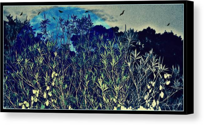 Landscape Canvas Print featuring the mixed media Back Yard Sky by YoMamaBird Rhonda