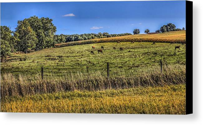 Farming Canvas Print featuring the photograph Farm Field by Ray Congrove
