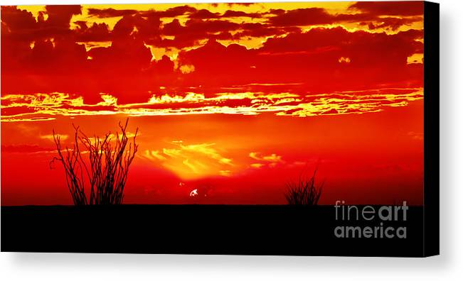Arizona Canvas Print featuring the photograph Southwest Sunset by Robert Bales