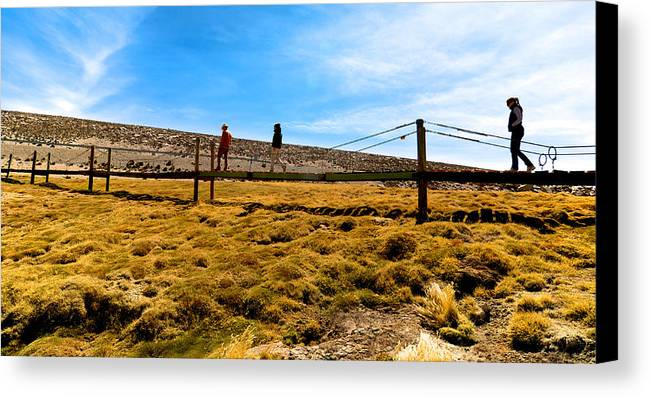 Lauca Canvas Print featuring the photograph Lauca National Park by Andre Distel
