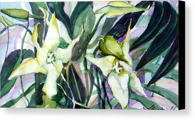 Orchids Canvas Print featuring the painting Spider Orchids by Mindy Newman