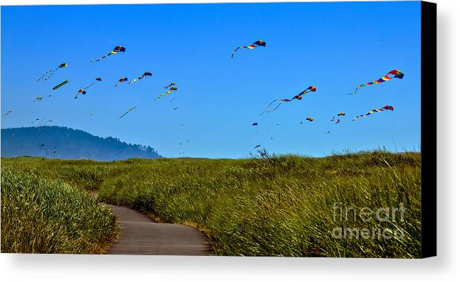Haybales Canvas Print featuring the photograph Kites by Robert Bales