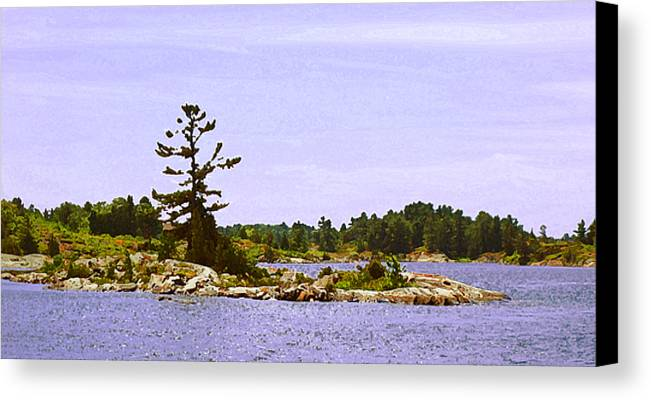 Landscape Canvas Print featuring the photograph Lone Tree 3 Db by Lyle Crump