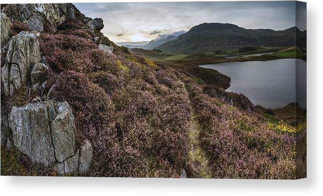 Landscape Canvas Print featuring the photograph Stunning Sunrise Panorama Landscape Of Heather With Mountain Lak by Matthew Gibson