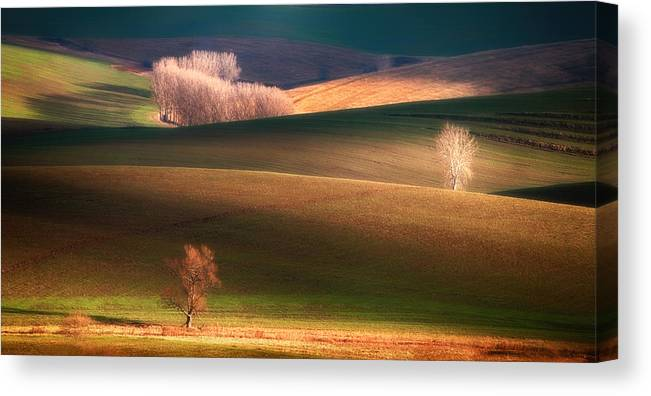 Landscape Canvas Print featuring the photograph Painted By The Light by