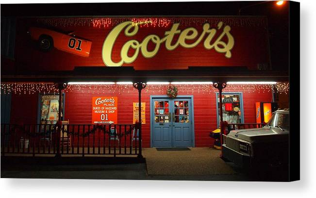 Cooters At Christmas Canvas Print featuring the photograph Cooters At Christmas by Dan Sproul