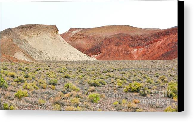 Sky Canvas Print featuring the photograph Just Desert by Marilyn Diaz