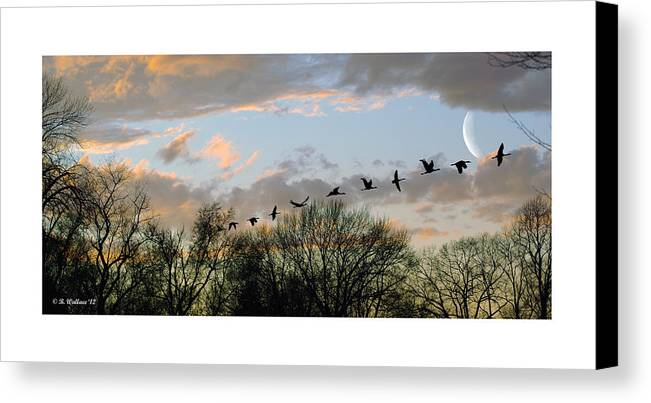 2d Canvas Print featuring the photograph Winter Sunset Silhouette by Brian Wallace