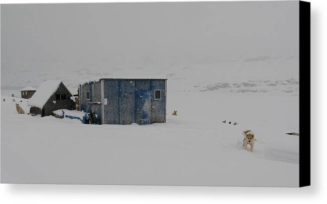 Arctic Canvas Print featuring the photograph A Sledge Dog House Two by Sidsel Genee