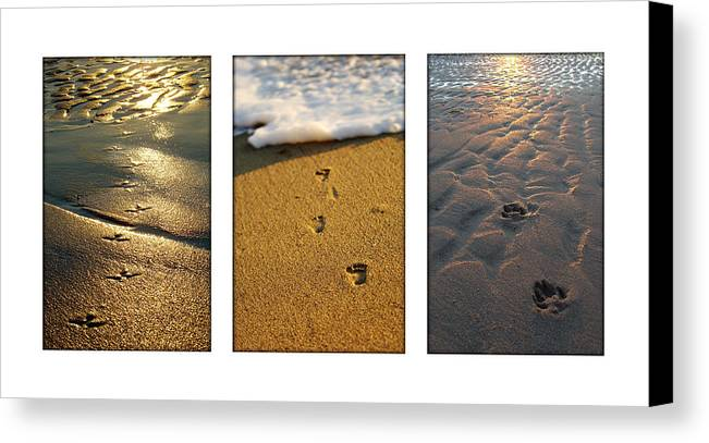 Beach Canvas Print featuring the photograph Footprints In The Sand by Jill Reger