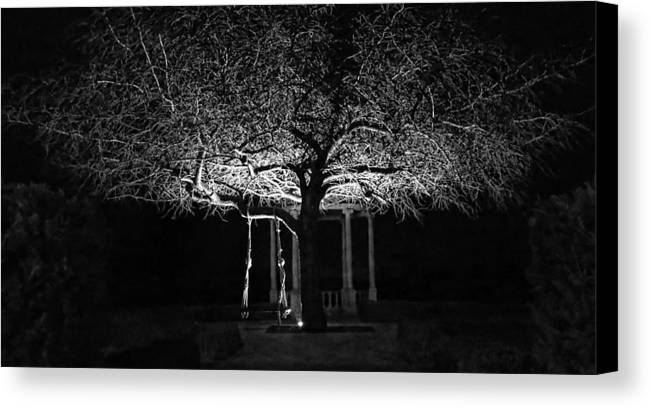 Landscape Canvas Print featuring the photograph Tree And Swing by Terron Murray