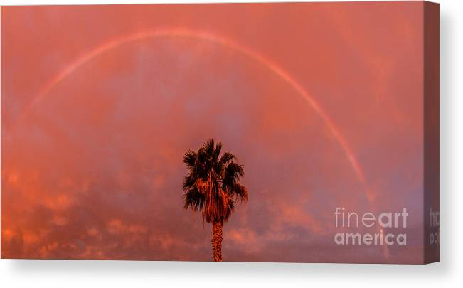 Rainbow Canvas Print featuring the photograph Morning Rainbow by Robert Bales
