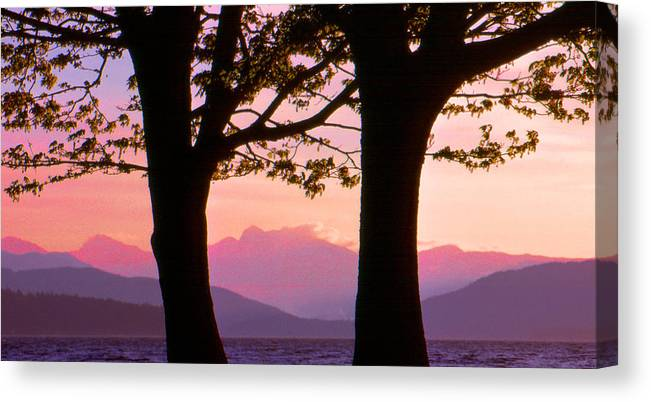 Landscape Canvas Print featuring the photograph Through The Trees In Vancouver B.c 42 by Lyle Crump