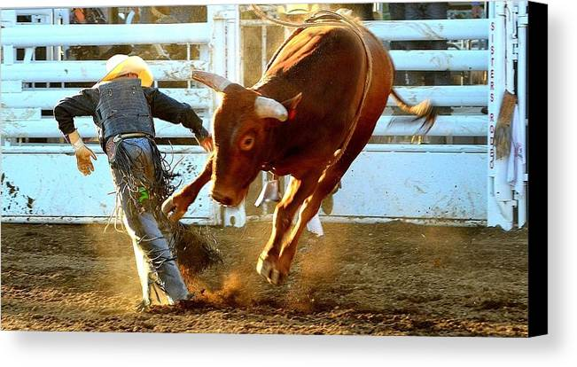 Cowboy Canvas Print featuring the photograph I'm Outta Here by Barbara Dudley