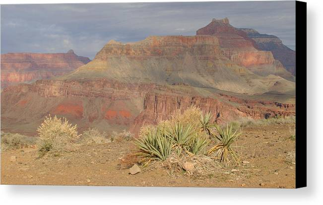 Grand Canyon Canvas Print featuring the photograph Canyon View by Donald Tusa