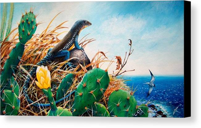 Chris Cox Canvas Print featuring the painting St. Lucia Whiptail by Christopher Cox