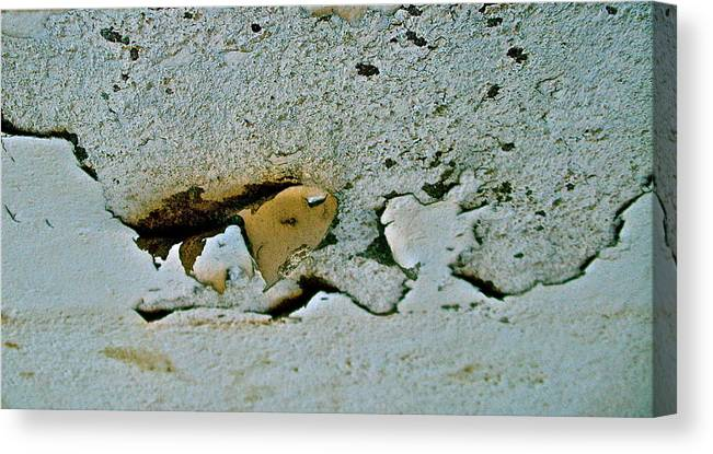 Photograph Canvas Print featuring the photograph Abstract Photo by Cliff Spohn