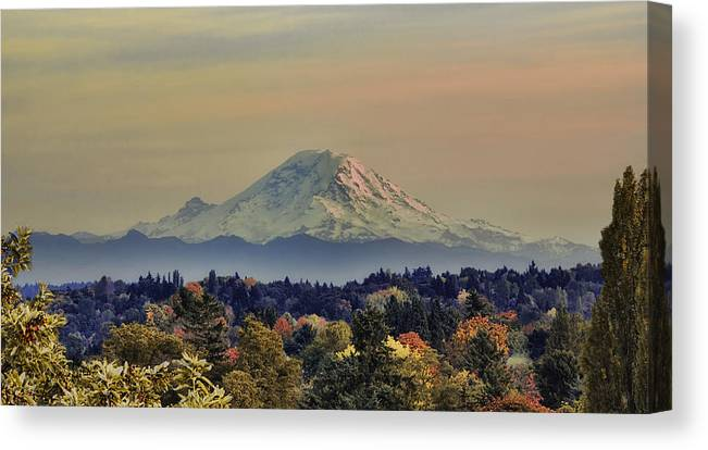 Panoramic Canvas Print featuring the photograph Mt Rainer Fall Color Rising by James Heckt