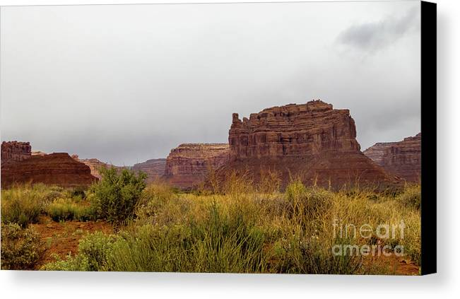 Valley Of The Gods Canvas Print featuring the photograph After The Rains by Jerry Sellers