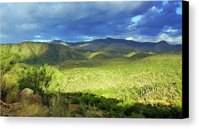 Landscape Mountains Green Cactus Sunrise Bumblebee Canvas Print featuring the photograph Bumblebee, Az 3 by Florine Duffield