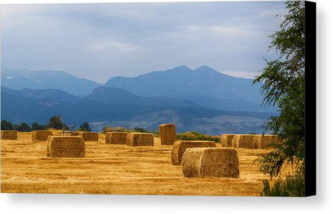 Mountains Canvas Print featuring the photograph Colorado Agriculture Farming Panorama View Pt 2 by James BO Insogna