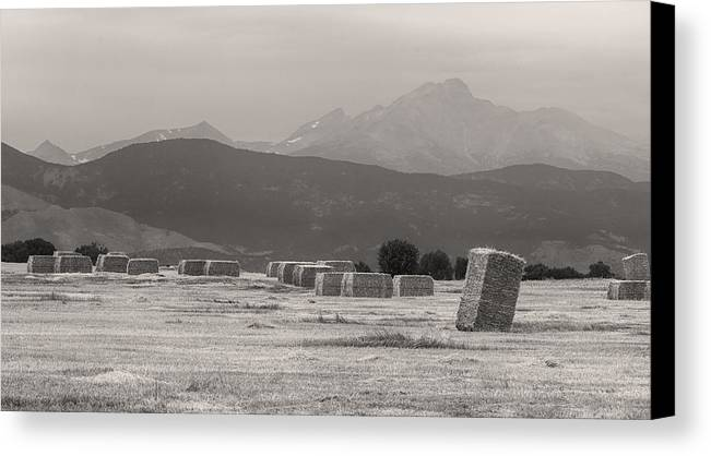 Mountains Canvas Print featuring the photograph Colorado Farming Panorama View In Black And White Pt 1 by James BO Insogna