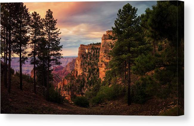 Angels Window Canvas Print featuring the photograph Light On Angels Window by Adam Schallau