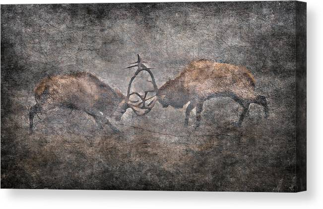 Elk Fighting Canvas Print featuring the photograph The Fight by Garett Gabriel