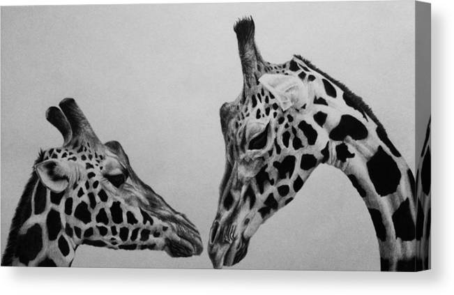 Together Canvas Print featuring the drawing Together by Carlos Velasquez Art