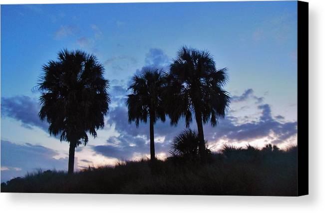 Mark Lemmon Cape Hatteras Nc The Outer Banks Photographer Subjects From Sunrise Canvas Print featuring the photograph 3 Palms 9/19 by Mark Lemmon