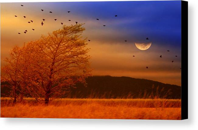 Landscape Canvas Print featuring the photograph Against The Wind by Holly Kempe