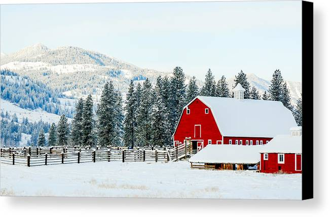 Christmas Canvas Print featuring the photograph Christmas Dreams by William Krumpelman