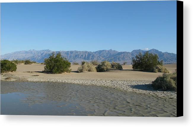 Death Valley Canvas Print featuring the photograph Desert Moisture by Riki and Allen Colby
