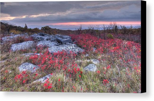 Dolly Sod Wv West Virginia Landscape Hdr Sunrise Clouds Red Wild Flowers Canvas Print featuring the photograph Dolly Sod Field by Stephen Lilly