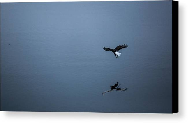 Eagle Canvas Print featuring the photograph Food In The Mirror by Robi Castaneda