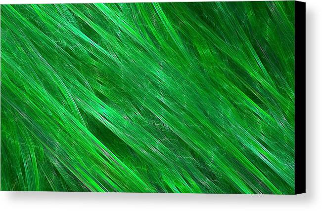 Streaming Canvas Print featuring the digital art Green Streaming by Doug Morgan