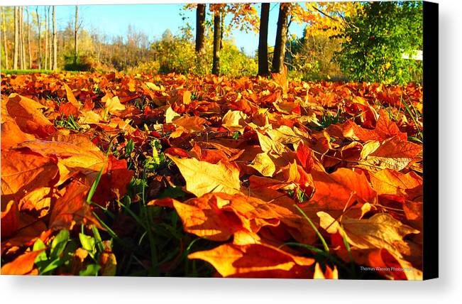 Orange Canvas Print featuring the photograph Orange Leafs by Thomas Wasson