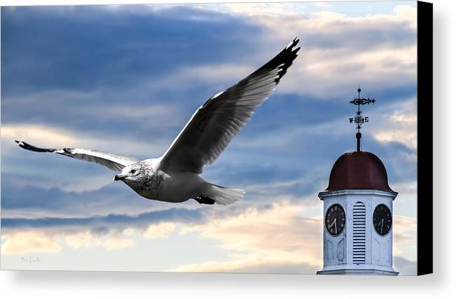 Seagull Canvas Print featuring the photograph Seagull And Clock Tower by Bob Orsillo