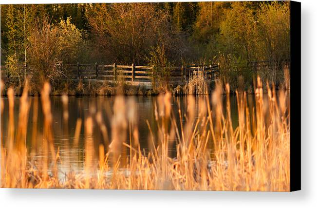 Landscape Canvas Print featuring the photograph Sunset Tranquility by Valerie Pond