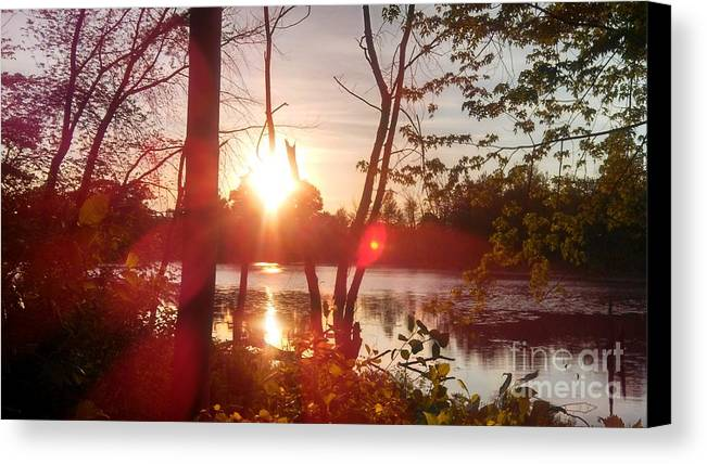 Swamps Canvas Print featuring the photograph Swampy Sunset #1 by Lisa Gifford