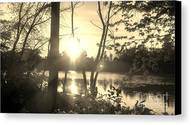 Swamp Canvas Print featuring the photograph Swampy Sunset #4 by Lisa Gifford
