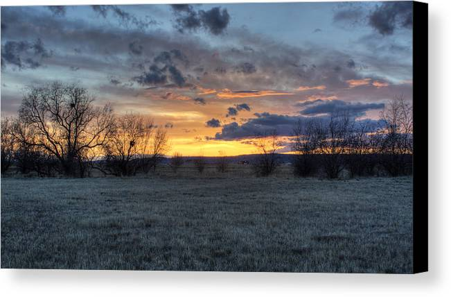 Montana Canvas Print featuring the photograph The Waiting Time by Cynthia Bruner